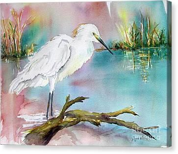 Birds Canvas Print - Beautiful Egret by Joyce Allen