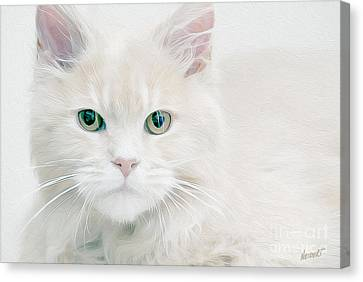 Beautiful Eyes Canvas Print by Jon Neidert