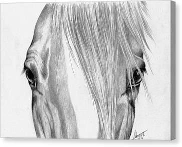 Beautiful Eyes Canvas Print by Robyn Green