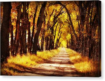 Beautiful Fall Day In Nebraska Canvas Print by Julie Hamilton