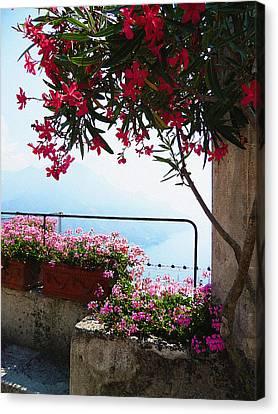 Beautiful Flowers Of Ravello Italy Canvas Print by Irina Sztukowski