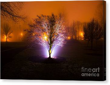 Beautiful Foggy Night 2 Canvas Print by Michael Cross