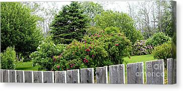 Beautiful Front Yard - Roses - Trees Canvas Print by Barbara Griffin