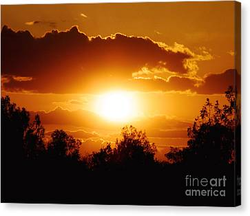 Canvas Print featuring the photograph Beautiful Moment In Bakersfield by Meghan at FireBonnet Art