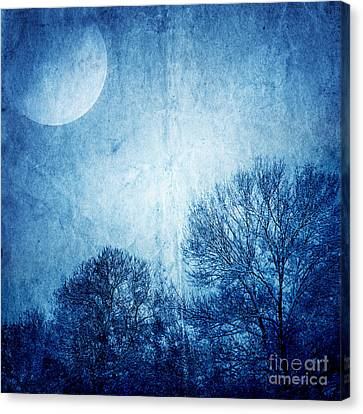 Beautiful Moonlight Photos Canvas Print by Boon Mee