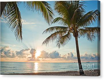 Beautiful Morning In Ft. Lauderdale Florida Canvas Print by Sharon Dominick