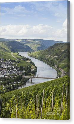 Beautiful Mosel River Canvas Print by Patricia Hofmeester
