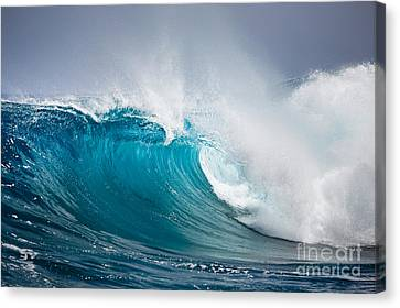 Beautiful Ocean Wave Canvas Print by Boon Mee