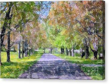 Beautiful Pathway Canvas Print by Kathleen Struckle