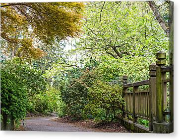 Beautiful Pathway Canvas Print by Priya Ghose