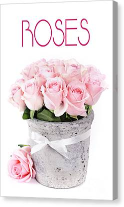 Beautiful Pink Roses Valentine Canvas Print by Boon Mee