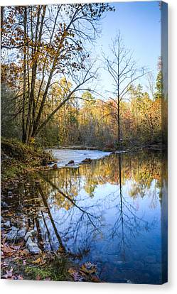 Beautiful Reflections Canvas Print by Debra and Dave Vanderlaan