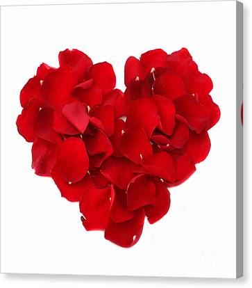 Beautiful Rose Heart Valentine Canvas Print by Boon Mee