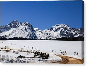 Haybales Canvas Print - Beautiful Sawtooth Mountains by Robert Bales