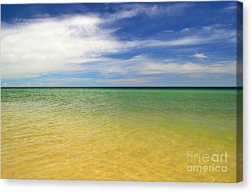 Canvas Print - Beautiful St George Island Water by Holden Parker