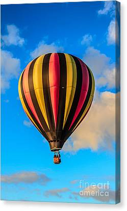 Beautiful Stripped Balloon Canvas Print by Robert Bales