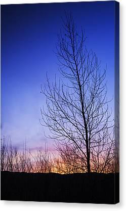 Simple Beauty In Colors Canvas Print - Beautiful Sunrise In Boise Idaho Usa by Vishwanath Bhat