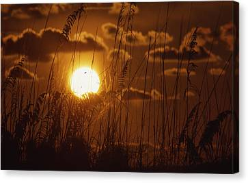 Beautiful Sunset View Canvas Print by Retro Images Archive