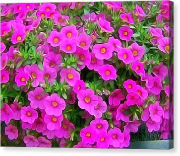 Beautiful Suntory Flowers Canvas Print by Lanjee Chee