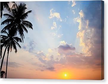 Beautiful Tropical Sunset Canvas Print by Nila Newsom