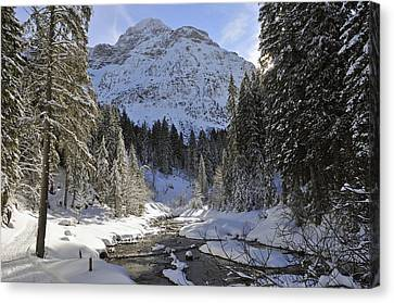 Vorarlberg Canvas Print - Beautiful Valley In Winter - Snowy Trees River And Mountains by Matthias Hauser