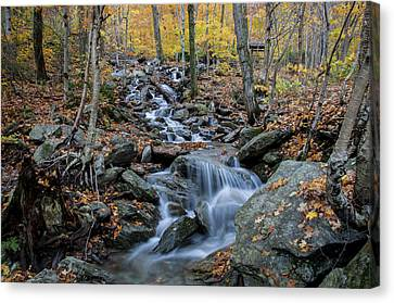 Beautiful Vermont Scenery 31 Canvas Print by Paul Cannon