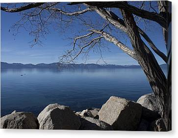 Beautiful View Of Lake Tahoe Canvas Print by Ivete Basso Photography