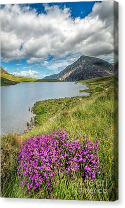 Cwm Idwal Canvas Print - Beautiful Wales by Adrian Evans