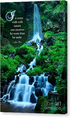 Beautiful Waterfalls Through A Walk With Nature Canvas Print by Beverly Claire Kaiya