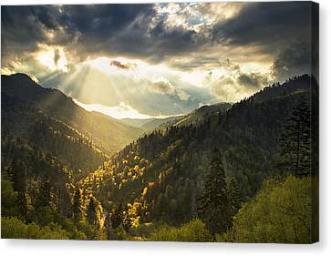 Beauty After The Storm Canvas Print by Andrew Soundarajan