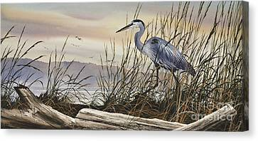 Great Blue Heron Canvas Print - Beauty Along The Shore by James Williamson