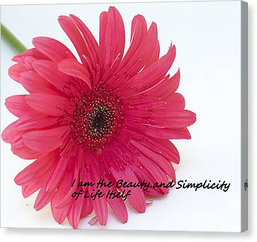 Beauty And Simplicity Canvas Print