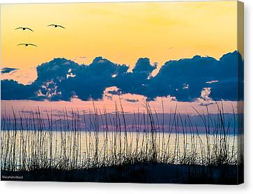 Beauty And The Birds Canvas Print