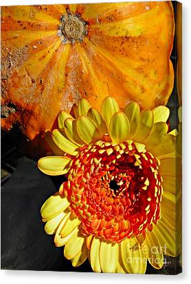 Beauty And The Squash 2 Canvas Print by Sarah Loft