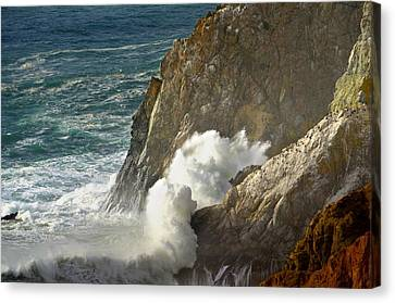 Beauty At The Beach  Canvas Print by Alex King