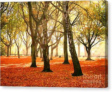 Canvas Print featuring the photograph Beauty Autumn by Boon Mee