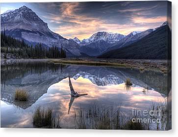 Beauty Creek Pre-dawn Canvas Print by Brian Stamm