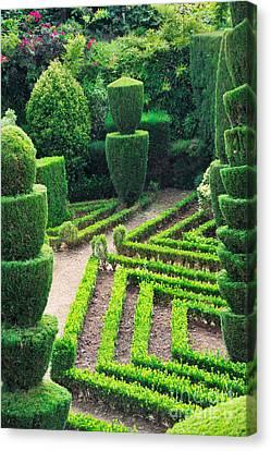 Johann Baptist Hofner Canvas Print - Beauty Decorative Green Park by Boon Mee