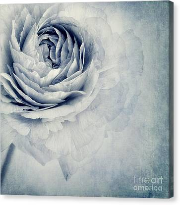 Blossoms Canvas Print - Beauty In Blue by Priska Wettstein