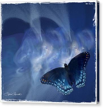 Beauty In Blue Canvas Print by Sylvia Thornton