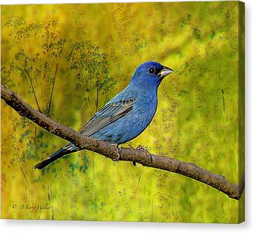 Canvas Print featuring the digital art Beauty In Nature - Indigo Bunting by J Larry Walker