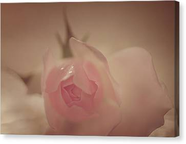 Loving Canvas Print - Beauty In The Rain by The Art Of Marilyn Ridoutt-Greene