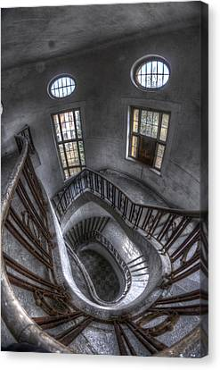 Beauty Looking Down Canvas Print by Nathan Wright