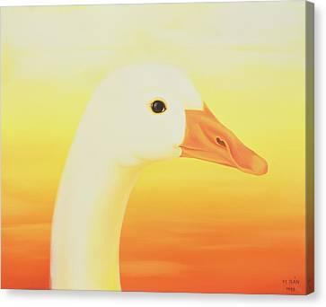 Yellow Beak Canvas Print - Beauty by Magdolna Ban
