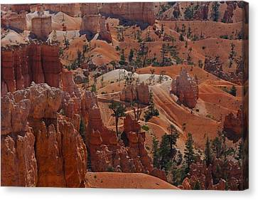 Beauty Of Bryce Canvas Print by Kimberly Oegerle