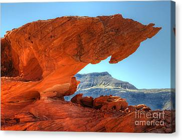 Thelightscene Canvas Print - Beauty Of Sandstone Little Finland by Bob Christopher