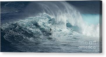 Beauty Of The Extreme Canvas Print by Bob Christopher