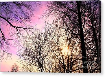 Beauty On Earth Canvas Print by Mike Grubb