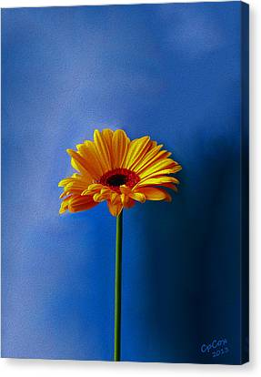 Beauty Out Of The Blue Canvas Print