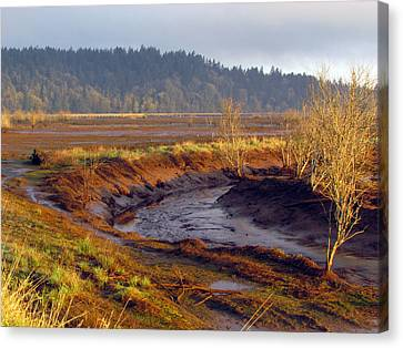 Canvas Print featuring the photograph Beauty Revealed At Low Tide by I'ina Van Lawick